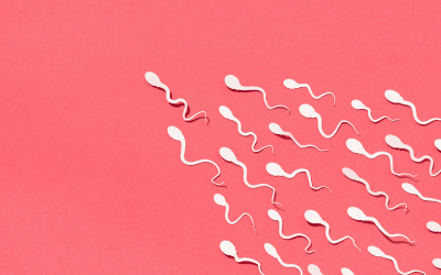 Top 7 Tips to improve sperm health